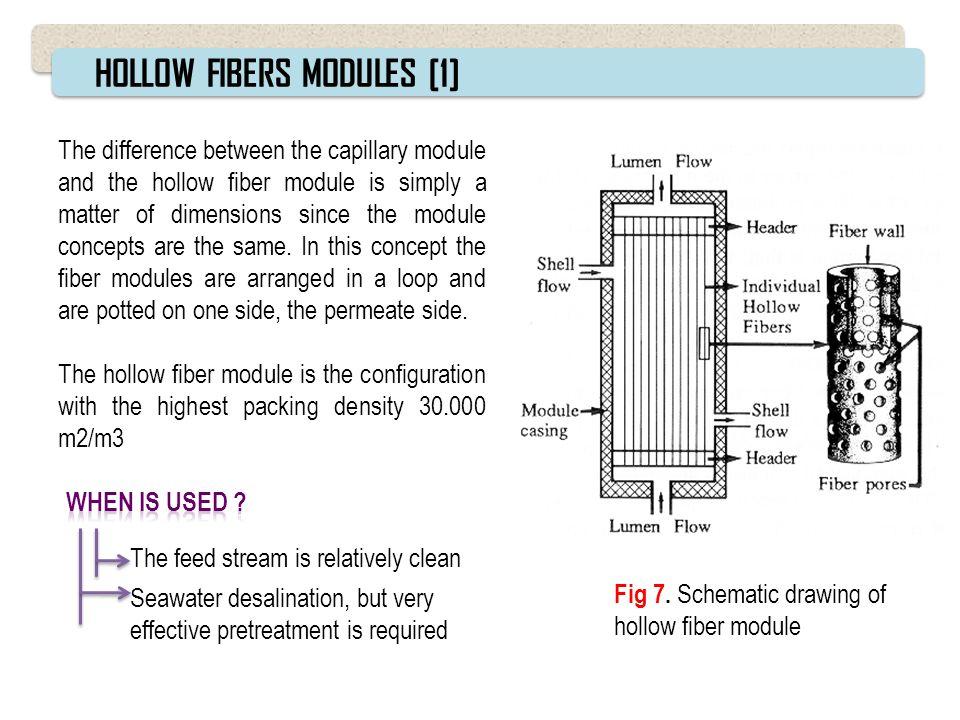HOLLOW FIBERS MODULES [1]